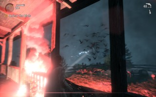 Alan Wake - Gameplay - Fighting Taken birds with flares and a flashlight